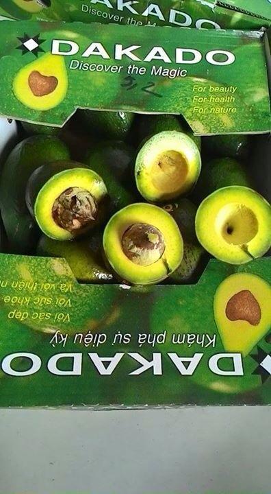 Khám phá công thức chế biến đồ uống từ trái Bơ DAKADO